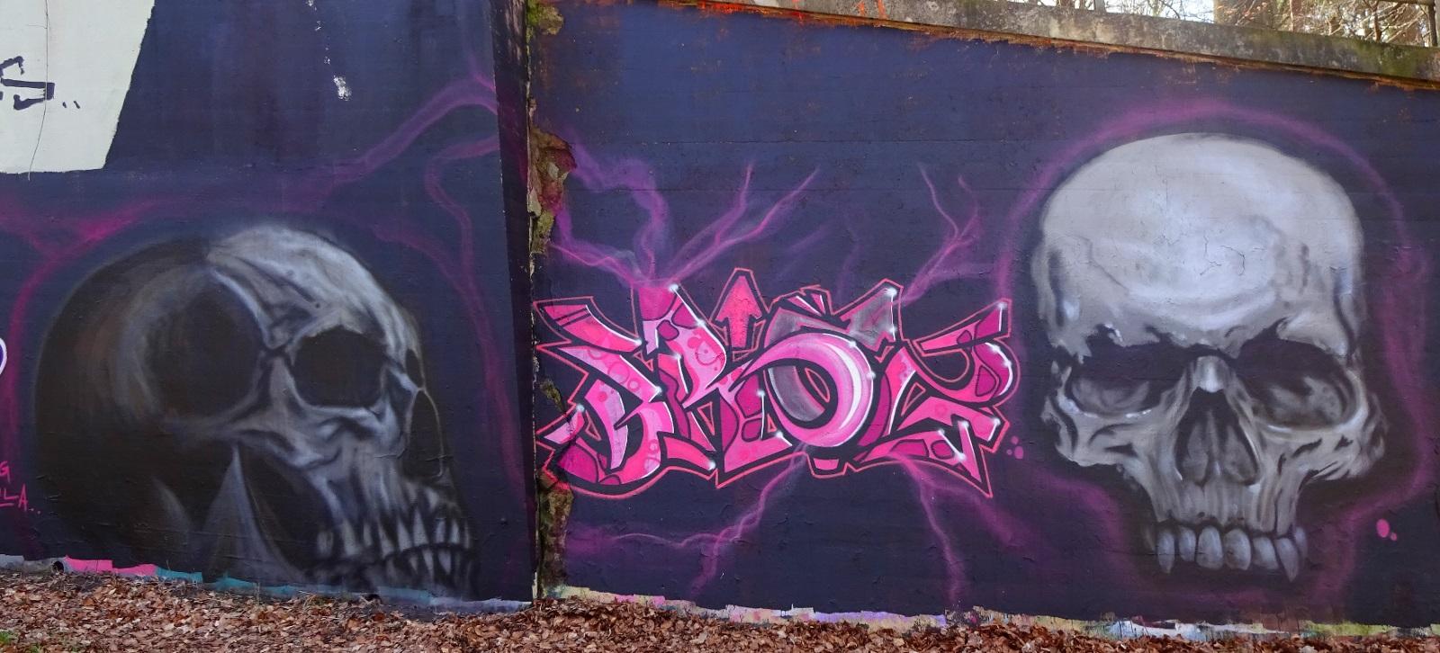 skull n broz bg